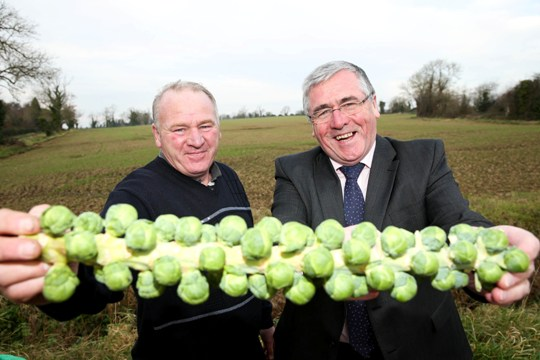 Minister Hayes with grower Enda Weldon at the Weldon Family farm in North Co Dublin